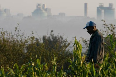 A farmer in his cornfield overlooking a smelter in Maputo.