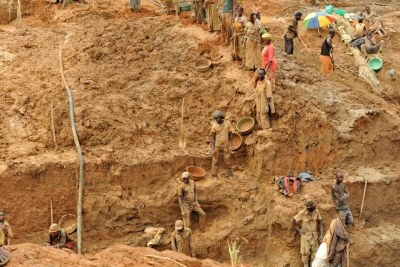 Artisanal gold miners form human chains to excavate near Iga-Barrière, about 25km east of Bunia