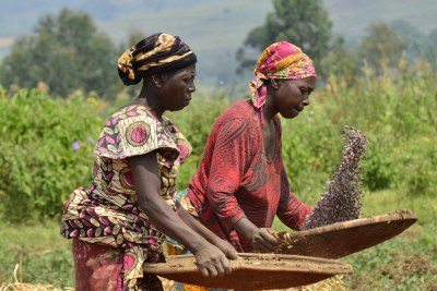Women farming (file photo).