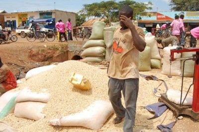 A farmer prepares maize for sale (file photo).