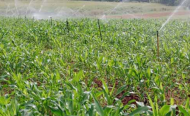 Is Irrigation Only Way to Food Security in Africa?