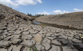 Drought Worsens, More Kenyans in Need of Aid