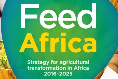 Launched in August 2016, Feed Africa is a renewed and determined effort to transform African Agriculture into a globally competitive, inclusive and business-oriented sector that creates wealth, generates gainful employment and improves quality of life. It also seeks to bring to scale existing and successful initiatives