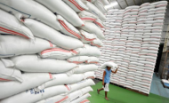 Nigeria Reforming Grain Storage Methods