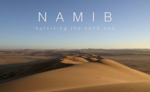 Documentary Shows Why Namib Sand Sea is a World Heritage Site