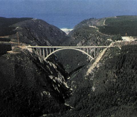 Bungee Jumping Bloukrans Bridge