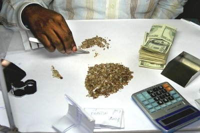Un négociant riche examine des diamants bruts dans son magasin à Mbuji Mayi.