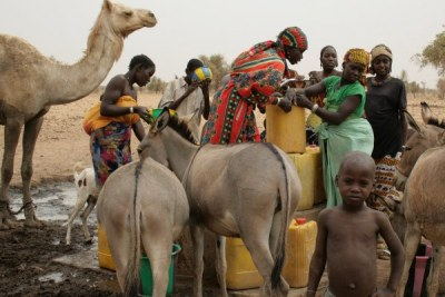 Animals gather around a pump as women fill jerry cans with water to take to their homes some 15 km away.