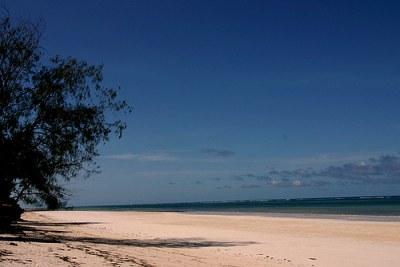 A beach in Diani, Kenya.