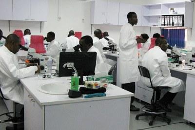 Nigerian lab technicians.