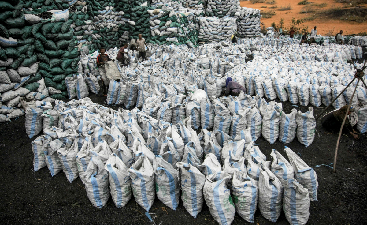 Somalia: Charcoal Still Smuggled From KDF Controlled Somalia Zones