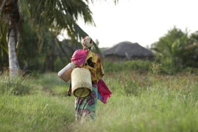 Les femmes en milieu  rural peuvent marcher des kilomètres pour trouver de l'eau.