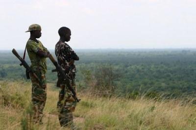 Jeunes homme armées dans le Nord-Kivu. (archive)