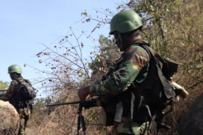 Cameroon military (file photo).