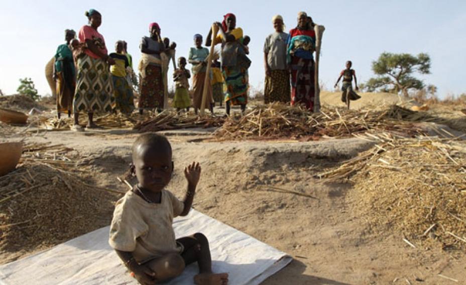 Nigeria: Famine, Malnutrition Loom in Nigeria, Experts Warn