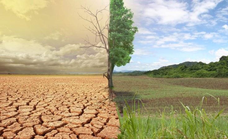 Nigeria: Paris Climate Change Agreement - How Has Nigeria Fared ...
