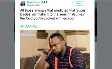 Super Eagles - Wasted Chances at Goal or Robbed by Referees?