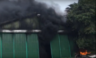 Buildings Set Alight as Protests Turn Violent in South Africa
