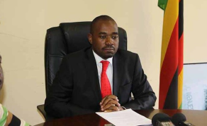 Mnangagwa Offering Chamisa A Job in Zimbabwe's Govt?