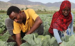Journée mondiale de l'alimentation - Agir pour l'avenir