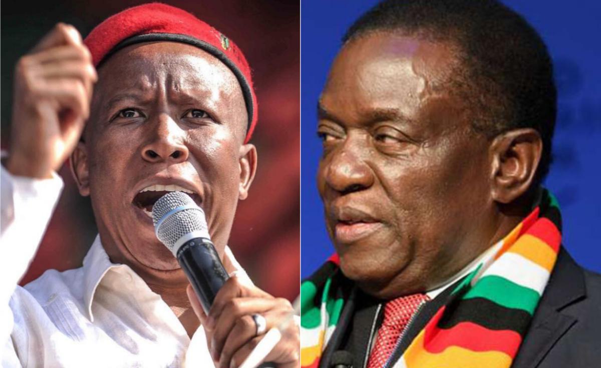 Zimbabwe: Shut Up, Ruling Party Youths Tell Malema