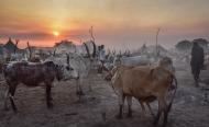 Food Crisis Grows in South Sudan - Aid Agency