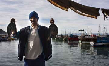 Industrial Chemicals Found in Fish Caught Off South African Coast