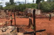 En Côte d'Ivoire, des agriculteurs confrontés à une vague d'expulsions...