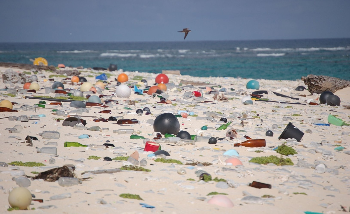 Why is plastic perceived to be such a significant threat?