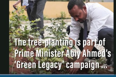 Prime Minister Abiy Ahmed gets his hands dirty.