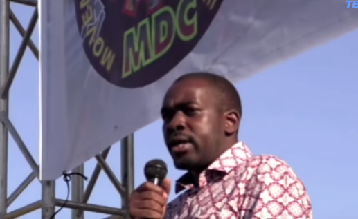 Thousands at Harare Rally to Celebrate MDC's 20th Anniversary
