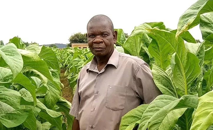 Malawi: President Proposes Switch From Growing Tobacco
